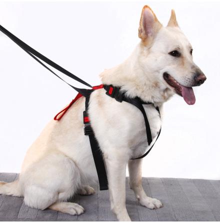 Artfex Säkerhetsbälte till Hund - Medium